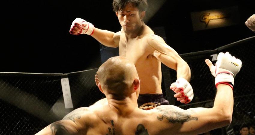 Photo de MMA